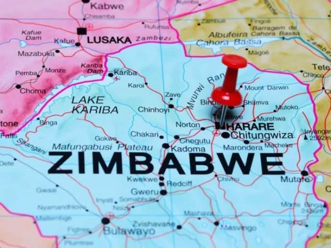 zimbabwe_zimbabwe_pin