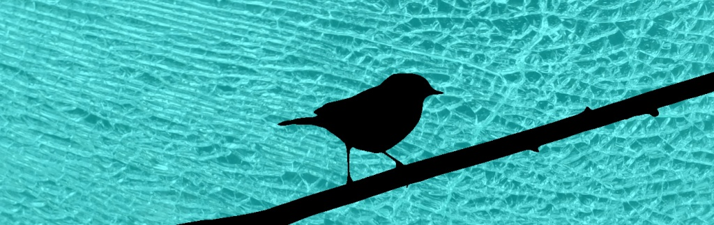 Silhouette of a small bird on a branch. The background is broken glass.